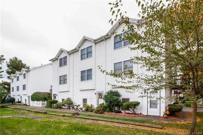 New Britain Condo/Townhouse For Sale: 243 Lawlor Street #1C