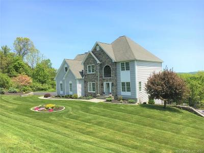Woodbury Single Family Home For Sale: 557 Upper Grassy Hill Road