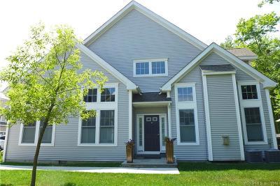 Bethel Condo/Townhouse For Sale: 48 Copper Square Drive #48