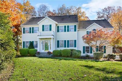 Norwalk Single Family Home For Sale: 87 Ponus Avenue
