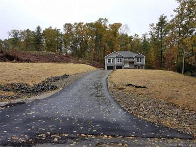 Windham County Single Family Home For Sale: 40 Airport Road