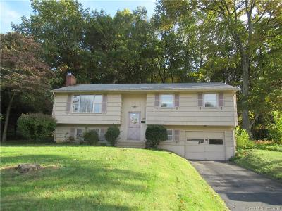 Bristol Single Family Home For Sale: 224 Ivy Drive