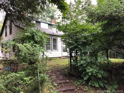 Windham County Single Family Home For Sale: 658 East Thompson Road