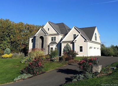 Southington Single Family Home For Sale: 21 Farmingberry Drive