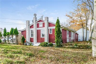 New Haven County Single Family Home For Sale: 163 Cottage Road