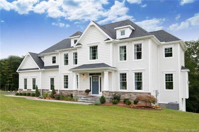 Burlington Single Family Home For Sale: 30 W. Ledge