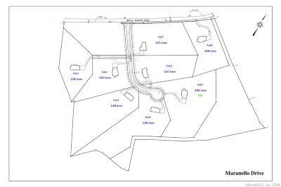 Newtown Single Family Home For Sale: Lot 2 Maranello Drive