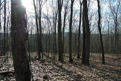 Southbury Residential Lots & Land For Sale: Lot 4 Murphy Lane