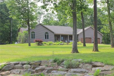 Barkhamsted Single Family Home For Sale: 82 Eddy Road