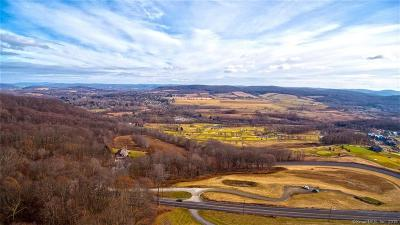 Dutchess County Single Family Home For Sale: 5028 Route 44