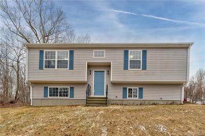 Ledyard Single Family Home For Sale: 913 Colonel Ledyard Highway
