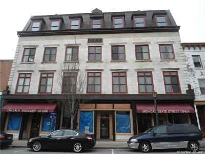 New London Condo/Townhouse For Sale: 130 State Street