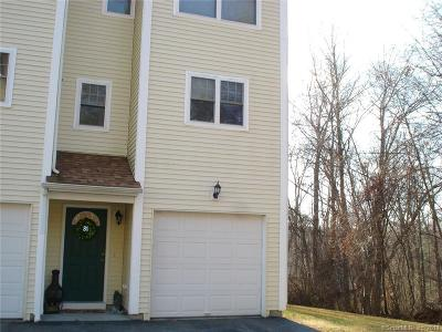 New London County Condo/Townhouse For Sale: 527 West Thames Street #80