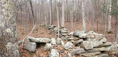 Brooklyn Residential Lots & Land For Sale: 01 Wolf Den Road