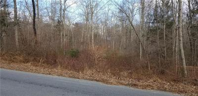Brooklyn Residential Lots & Land For Sale: 02 Wolf Den Road
