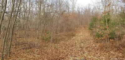 Brooklyn Residential Lots & Land For Sale: 03 Costello Road