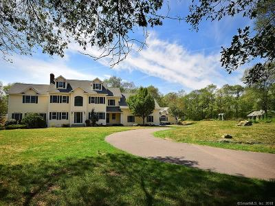 Ellington Single Family Home For Sale: 163 Crystal Lake Road