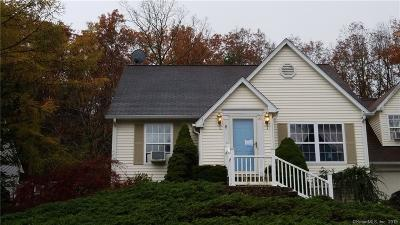 Windham County Condo/Townhouse For Sale: 20 Hilltop Drive #20
