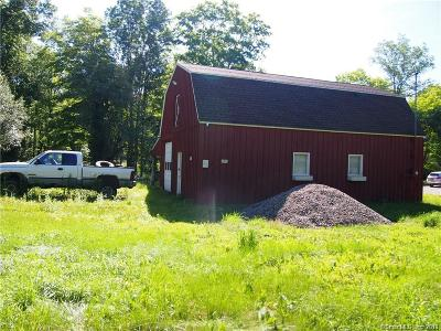 Windham County Residential Lots & Land For Sale: 606 Back Road
