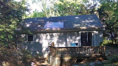 Ridgefield Single Family Home For Sale: 19 Sylvan Drive