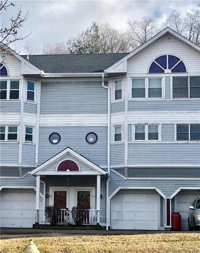 New Haven Condo/Townhouse For Sale: 47 Quinnipiac Avenue #47