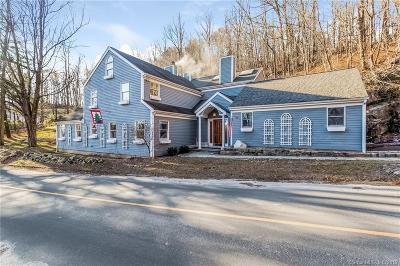 New Fairfield Single Family Home For Sale: 167 Pine Hill Road