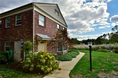 Middlesex County Condo/Townhouse For Sale: 27 South Main Street #15
