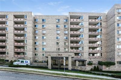 Stamford Condo/Townhouse For Sale: 143 Hoyt Street #1G