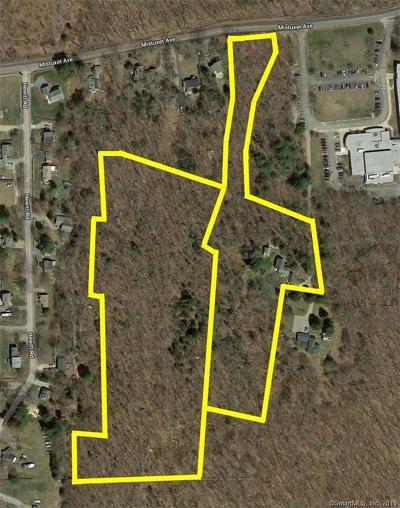 Stonington Residential Lots & Land For Sale: 200 Mistuxet Avenue