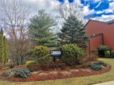 Groton Condo/Townhouse For Sale: 56 Courtland Drive #56