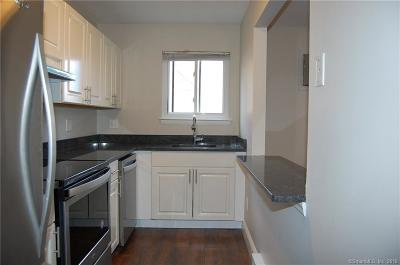 Danbury Condo/Townhouse For Sale: 19 Somers Street #B8
