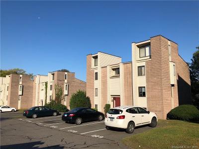 Middletown Multi Family Home For Sale: 126 Burgundy Hill Lane #126