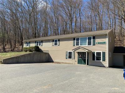 Putnam Single Family Home For Sale: 213 Pomfret Street