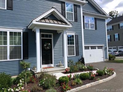 Danbury Condo/Townhouse For Sale: 41 Mill Road #41