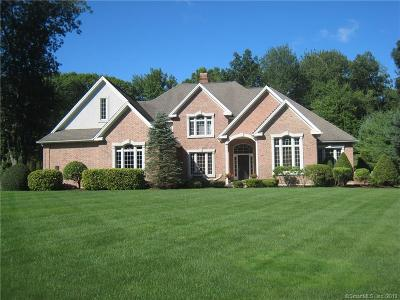 Farmington Single Family Home For Sale: 46 Portage Crossing