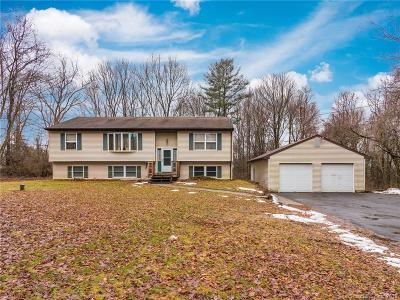 Thomaston Single Family Home For Sale: 166 Cedar Mountain Road