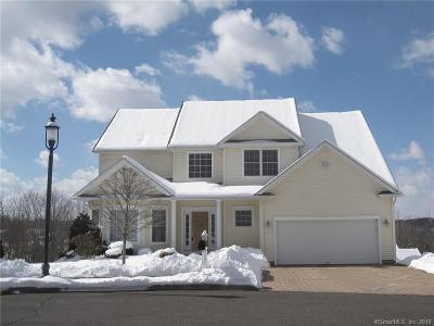 Danbury Single Family Home For Sale: 12 Margerie View Drive #12