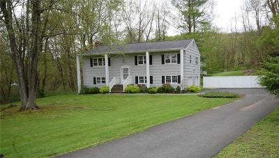 Fairfield County Single Family Home For Sale: 393 North Salem Road