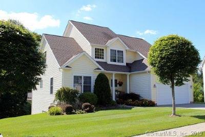 Danbury Condo/Townhouse For Sale: 4 Spring Ridge Court #4