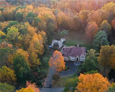BROOKFIELD Single Family Home For Sale: 10 Edna Court