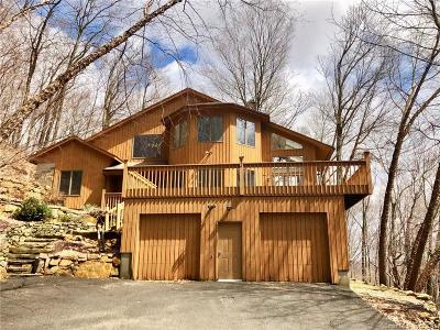 New Milford Single Family Home For Sale: 20 McNulty Drive