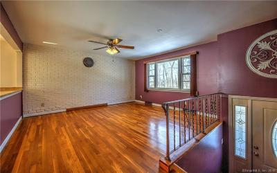 Milford Single Family Home For Sale: 33 Shadyside Lane