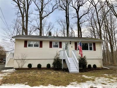 Ridgefield Single Family Home For Sale: 8 Lakeside Drive Extension