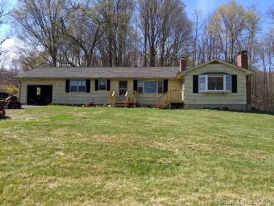 Burlington Single Family Home For Sale: 744 George Washington Turnpike