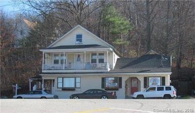 Putnam Multi Family Home For Sale: 355 School Street