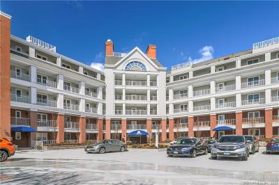 Stamford Condo/Townhouse For Sale: 43 Harbor Drive #502