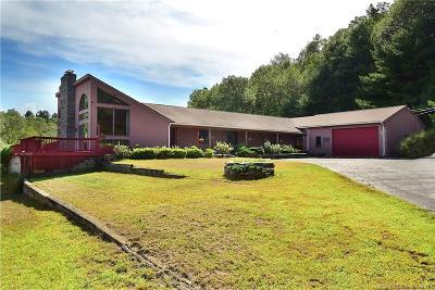 Tolland Single Family Home For Sale: 59 Fox Ridge Lane