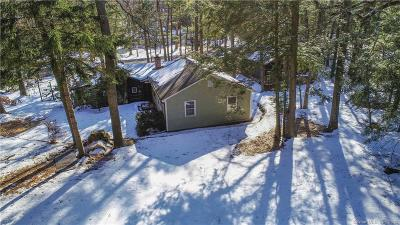 Simsbury Single Family Home For Sale: 8 Willard Street
