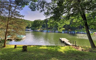 SHERMAN Single Family Home For Sale: 5 Hillside Drive