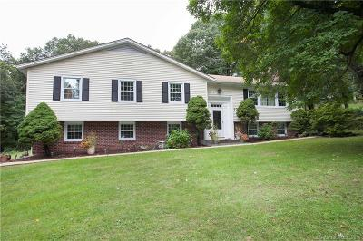 North Haven Single Family Home For Sale: 17 Mansfield Road